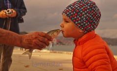 Fish and child. (tameristan) Tags: fish fishing sea istanbul bosphorus child baby bebek