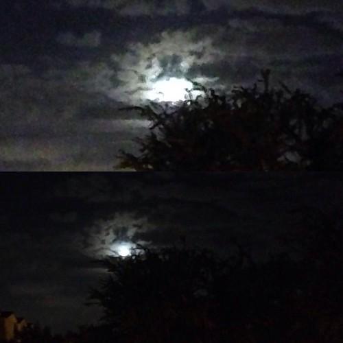 Três dias seguidos fotografando a lua fazem de mim uma lunática? Sim ou com certeza? #lua #nofilter #moon #luna #moonlovers