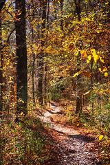 DSC08907-09_HDR (Capt Kodak) Tags: autumn chattahoocheerivernationalrecreationarea fall hdrefexpro2 madefrom3images medlockbridgepark nationalparkservice nikcollectionbygoogle niksoftware photomerge