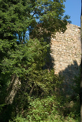 View of the walls of Defence (Hejma (+/- 5000 faves and 1,6 milion views)) Tags: lanckorona poland castle walls destroyed aggressor swedes chiaroscuro forest green leaves