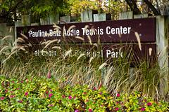 _MG_0282 (Montgomery Parks, MNCPPC) Tags: tennis tenniscourt racket indoors court teens teenagers sports recreation november 2016 class