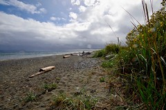 Sun breaking through during rain squall at the beach (daniellacy562) Tags: beach beachgrass clouds landscape nature outdoors pacificnorthwest rain raindrops sand seagrass storm sun weather