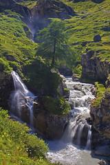 Giardino zen / Zen garden (Val di Rhemes, Valle D'Aosta, Italy) (AndreaPucci) Tags: valgrisenche valledaosta italy waterfall paradise zen garden alps andreapucci canoneos60 summer holidays