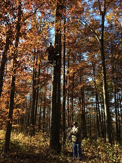 Kentucky Whitetail Hunt 6