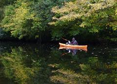 Kayak Dart Rob 20 (chris-parker) Tags: kayak river dart canoe kayaking canoeing devon south west perception