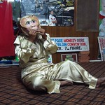 "Monkey at Mustache Brothers <a style=""margin-left:10px; font-size:0.8em;"" href=""http://www.flickr.com/photos/14315427@N00/6924231494/"" target=""_blank"">@flickr</a>"