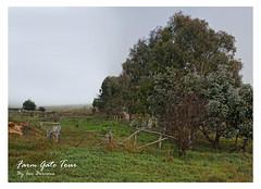 Farm_Gate_Tour (Beetwo77) Tags: panorama stitch pano panoramic stitching stitched giga autopano autopanogiga