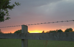 Barb wire sunset 2 (Benjaminio) Tags: sunset sky sun green nature field closeup clouds canon landscape eos evening wire horizon scene fields barb 1100d