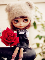 Will Mommy love the rose I get for her?