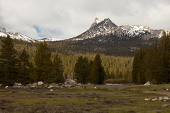 cathedral peak from tuolumne meadows (ohikura) Tags: california ca yosemitenationalpark tuolumnemeadows cathedralpeak sodasprings tiogaroad glenaulintrail