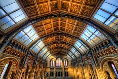 Natural History Museum, London (Jim Nix / Nomadic Pursuits) Tags: uk travel england london architecture nikon europe unitedkingdom naturalhistorymuseum hdr nomadicpursuits