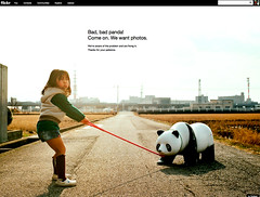 I Like the New Flickr Interface ~ BUT ~ It Helps Me Practice Patience (buddhadog) Tags: asian panda problem littlegirl patience gettingfixed