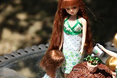 In the Garden 04 (Licca-chan) Tags: autumn amy jasmine gloria honey licca