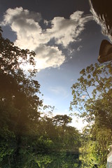 El cielo en el suelo (Respect yourself ~) Tags: sky peru water clouds river de mirror flora rainforest selva jungle madre dios perou tambopata