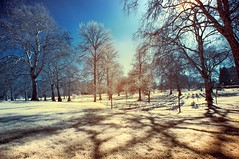 Infrared Photography, Green Park, Westminster, England (josecarlo1129) Tags: england london landscapes travels nikon tokina infrared hoya