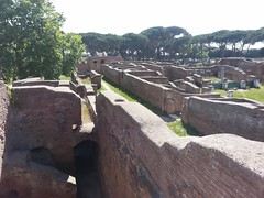 Ruins (Meikon Art) Tags: italy cats rome roma art cat europe italia kittens antica kitties ostia ostiaantica