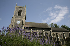Thetford Church (Adam Swaine) Tags: county uk flowers england green english church beautiful rural canon photography countryside flora village britain norfolk lavender villages churchtower east churchyard thetford counties naturelovers villagechurch 24105mm swaine 2013 englishvillages thisphotorocks adamswaine mostbeautifulpicturesmbppictures wwwadamswainecouk