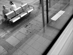 A quiet corner. 2013. (Dave Whatt) Tags: above blackandwhite composition corner women conversation busview chatting