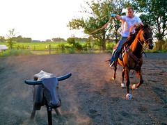 Roping practice {222/365} (therealjoeo) Tags: horse cowboy texas rope taylor 365 practice steer dust roping lasso riata 365project