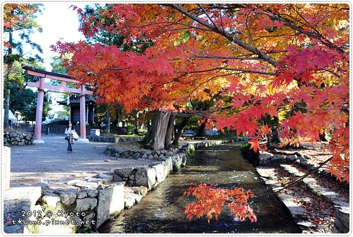 上賀茂神社 (9).jpg