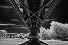 yuba river bridge infrared. marysville, ca. 2013. (eyetwist) Tags: california city longexposure railroad bridge shadow summer bw white black hot monochrome up clouds contrast digital silver river ir blackwhite nik