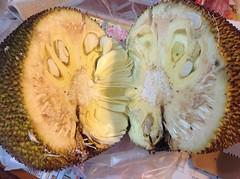 IMG_0777 (shifthappens) Tags: diy mess taiwan cutting taichung jackfruit