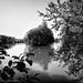 L'étang de La Chèze