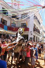 Jaleo de Alaior (Roberto Cacho) Tags: horse caballo fiestas menorca jaleo alaior