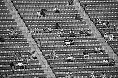 New York 2013 (Gilles LEFEUVRE) Tags: usa newyork france sport canon football flushingmeadows tennis but om blanc couleur pelouse rencontre barthez usopen psg foix france98 parissaintgermain exterieur geodis lesbleus robertpires laurentblanc olympiquedemarseille claudemakelele amoros 5dmarkii matchdefootball 5dmark2 varieteclubdefrance alaingiresse usopen2013 didierdechamps fabienbarhez claudepluel