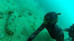 Сазанчик - подводная охота.