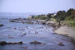 Jusangjeolli Gyeongju (K-mood) Tags: sea heritage beach rocks korea southkorea gyeongju jusangjeolli