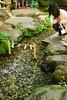 d200_dsc_2279_20150517 (mick ronno) Tags: nikon shrine af d200 kawagoe nikkor 2870mmf3545d jinja 川越 hikawa 氷川神社 koedo 小江戸