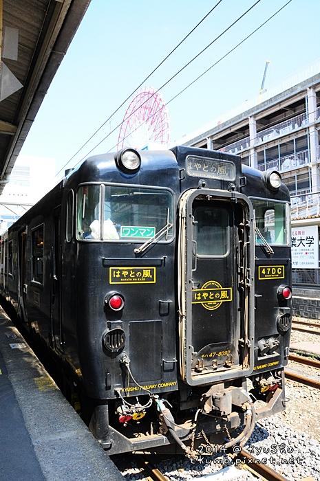 2014隼人之風 (9).jpg