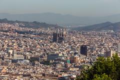 Sagrada Familia (thefuton) Tags: barcelona travel church spain cathedral gaudi sagradafamilia montjuic
