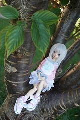 Nature 02 (raciele) Tags: atelier momoni bjd balljointeddoll ball jointed doll dolly cute kawaii sweet fairy kei mori