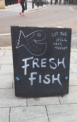 Fresh Fish (Smabs Sputzer) Tags: fish sign pisces stockport blackboard chalk schoolroom pink shoes advertisement soft sell hard