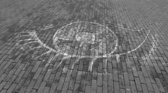 (Miranda Ruiter) Tags: amsterdam museumplein blackandwhite photography eye streetart