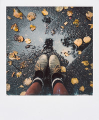 08/10/2016 (the girl who made it on her own) Tags: polaroid ronakeller october polaroidsx70 berlin autumninthecity autumn autumnalstreets autumninberlin instantfilm filmdiary filmmemories notetoself inlovewithberlin headless feetfromabove autumnclothes fallenleaves yellowleaves puddle leavesinapuddle fromwhereistand rona greenshoes redtights cosysocks autumnfeelings