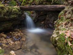 P1150122 (TallGrass-IA) Tags: edgewood iowa unitedstates us panasonic g6 1235 lumix micro43 microfourthirds waterfalls longexposure hiking outdoor nature moss