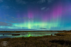 Aurora Borealis under a 90 full moon (Dark Arts Astrophotography) Tags: astrophotography astronomy aurora auroraborealis night nightscape northernlights kingston kingstonist ontario space stars sky nature natur