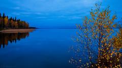 October blues (Joni Mansikka) Tags: autumn nature lake woodland trees outdoor landscape clouds colours calm blues pyhã¤jã¤rvi ylã¤ne suomi finland