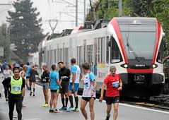 Hallwilerseelauf: Beim Start in Beinwil hat der Zug Vortritt