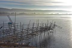 Scaffolding (Nige H (Thanks for 6.5m views)) Tags: nature landscape reservoir water cheddarreservoir mist scaffold scaffolding somerset england