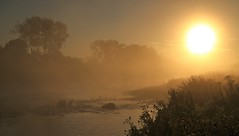 River, fog and sun (matt.clark25) Tags: fog mist river sun water sky weather autumn exe riverexe