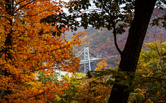 Bear Mountain (Terry (α)) Tags: bearmountain fallfoliage autumnleaves upstateny bearmountainbridge 500px