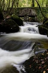 The Fall is here (charlestonjason28) Tags: bridge river waterflow autumn thefall