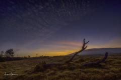 Sunrise @ Lualai Backyard (JUNEAU BISCUITS) Tags: panorama lualai lualaisubdivision waimea kamuela sunrise field hawaii bigisland clouds nikond810 nikon skyscape landscape