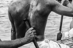 Oarsman | Aranmula boat race 2016,Kerala. (vjisin) Tags: kerala india asia photostory nikon nikond3200 tradition nikonofficial documentary composition outdoor people indianheritage backwaters indianculture daylight iamnikon oarsman boatman aranmula men