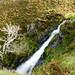 Top of Dash Falls