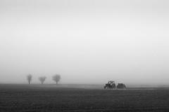 Autumn sowing in the fog (emil.rashkovski) Tags: black white bw monochrome fog mist tree trees plain sow sowing tractor machine village